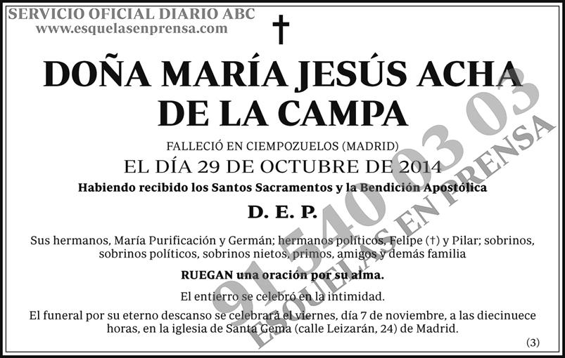 María Jesús Acha de la Campa